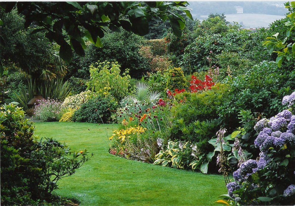 plantas con flores que resisten bien el verano