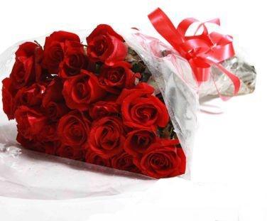 Pack de rosas Lola
