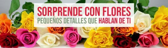 https://www.floristeriapetalos.com/pics/contenido/2773a56707c89696e454da5c15cd573354c8bd2dbanner-sorprende-con-flores-576x165.jpg