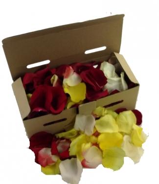 Caja de pétalos multicolor
