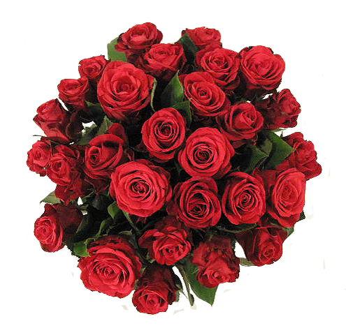 Ramo de rosas July