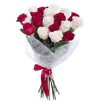 Pack de rosas Nancy