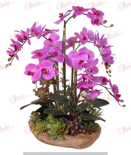 Centro de orquídeas Marie