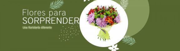 https://www.floristeriapetalos.com/pics/contenido/flores-para-sorprender-576x165.jpg