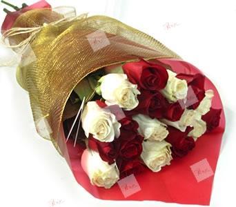 Pack de rosas Paula