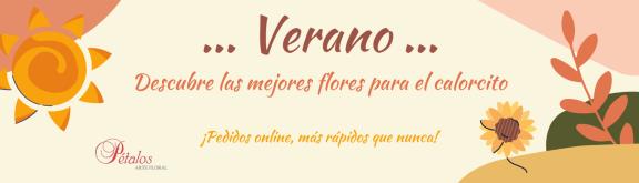 https://www.floristeriapetalos.com/pics/contenido/portada-web-verano-576x165.png